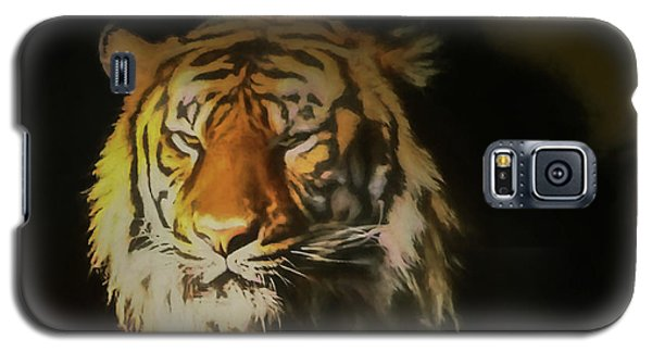 Painted Tiger Galaxy S5 Case