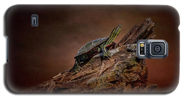 Painted Turtle Galaxy S5 Case