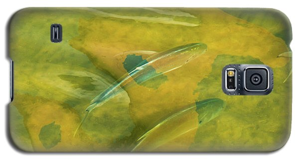 Galaxy S5 Case featuring the photograph Painterly Fish by Carolyn Dalessandro