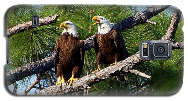 Galaxy S5 Case featuring the photograph Pair Of American Bald Eagle by Barbara Bowen