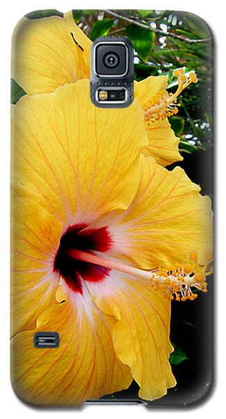 Pair Of Beauties Galaxy S5 Case