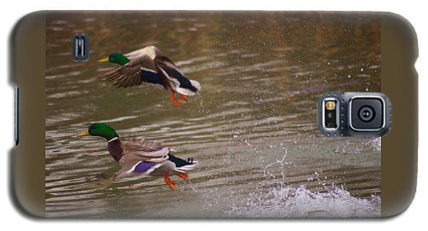 Pair Of Ducks Galaxy S5 Case