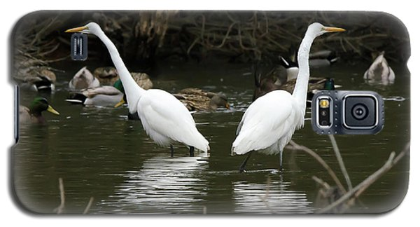 Galaxy S5 Case featuring the photograph Pair Of Egrets by George Randy Bass