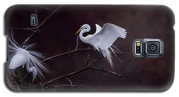 Pair Of Egrets Galaxy S5 Case by Kelly Marquardt