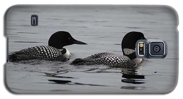 Galaxy S5 Case featuring the photograph Pair Of Loons by Steven Clipperton