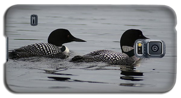 Pair Of Loons Galaxy S5 Case
