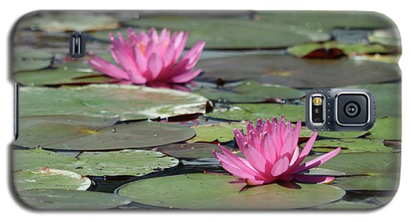 Pair Of Pink Pond Lilies Galaxy S5 Case
