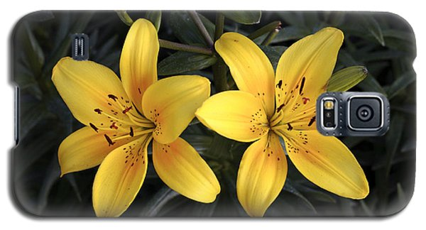 Pair Of Yellow Lilies Galaxy S5 Case