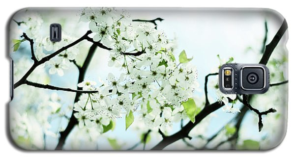Galaxy S5 Case featuring the photograph Pale Pear Blossom by Jessica Jenney