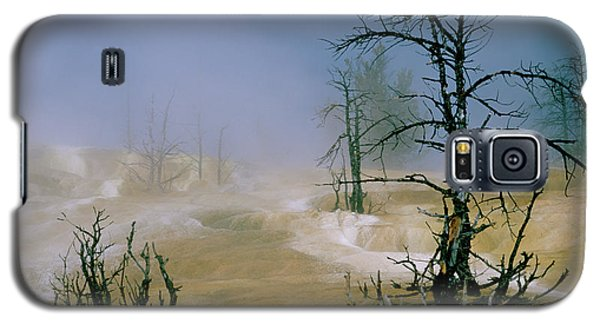 Palette Springs Galaxy S5 Case