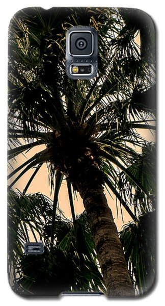 Palm Against The Sky Galaxy S5 Case