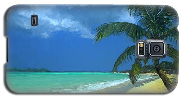 Galaxy S5 Case featuring the painting Palm Beach In The Keys by David  Van Hulst