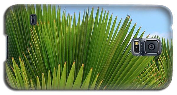 Palm Fans Galaxy S5 Case