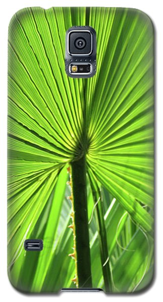 Palm Frond Galaxy S5 Case