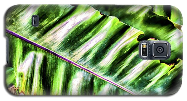 Palm Fronds Up Close Galaxy S5 Case
