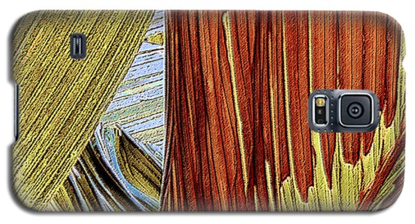 Galaxy S5 Case featuring the photograph Palm Leaf Abstract by Ben and Raisa Gertsberg