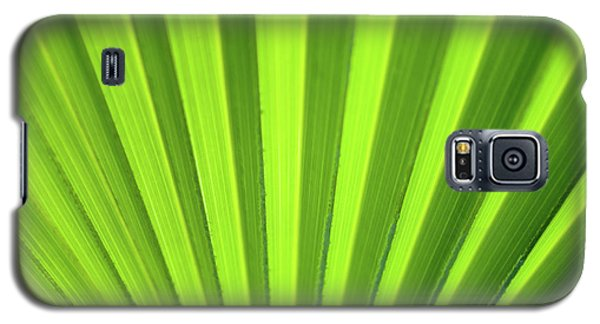 Palm Leaf Abstract Galaxy S5 Case