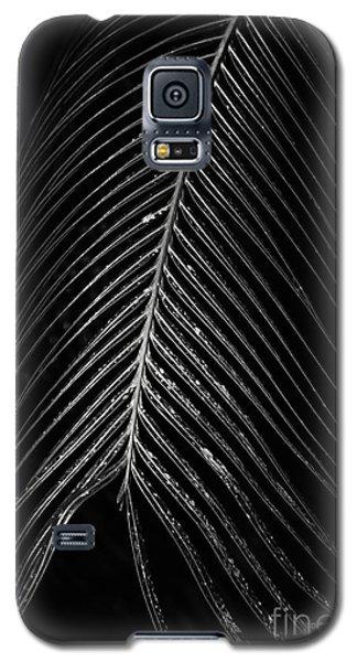 Galaxy S5 Case featuring the photograph Palm Leaf by Deborah Benoit