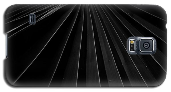 Palm Leaf Galaxy S5 Case by Roger Mullenhour