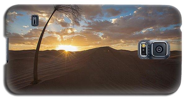 Palm On Dune Galaxy S5 Case
