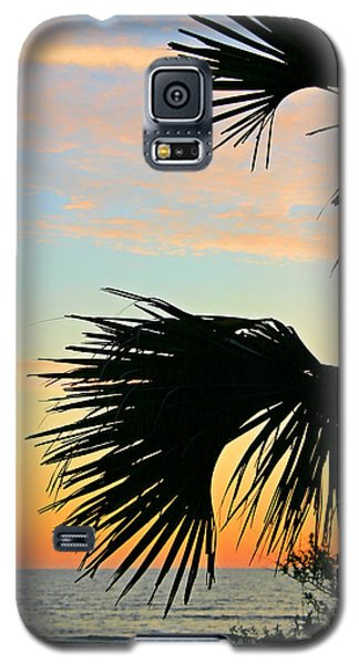 Galaxy S5 Case featuring the photograph Palm Silhouette by Kristin Elmquist