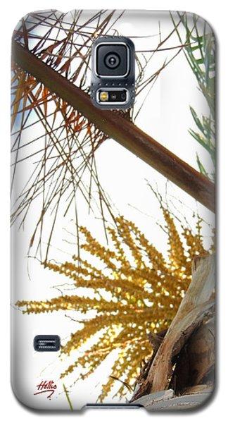 Palm Sky View Galaxy S5 Case by Linda Hollis