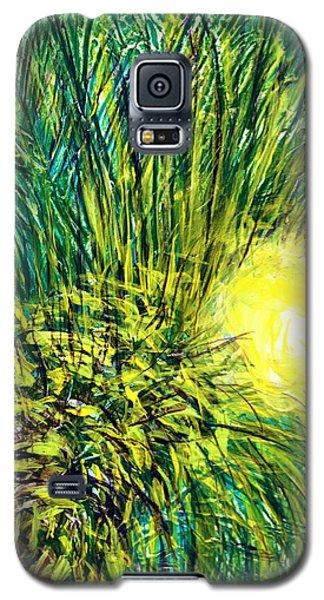 Palm Sunburst  Galaxy S5 Case