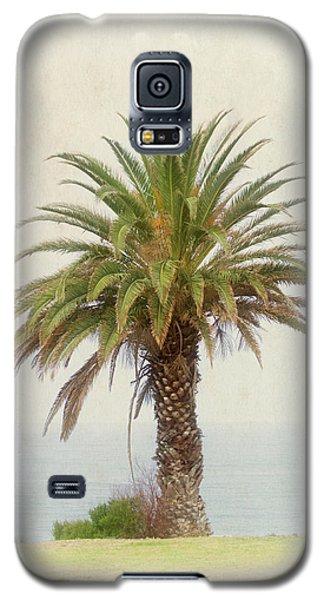 Palm Tree In Coastal California In A Retro Style Galaxy S5 Case