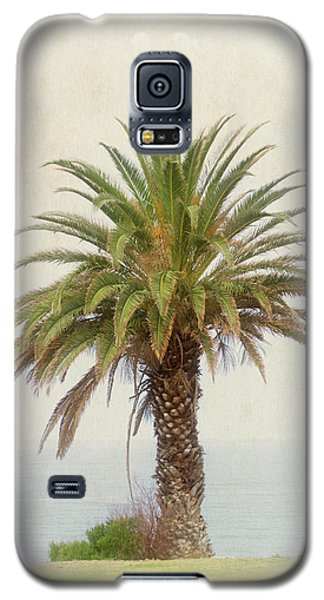 Palm Tree In Coastal California In A Retro Style Galaxy S5 Case