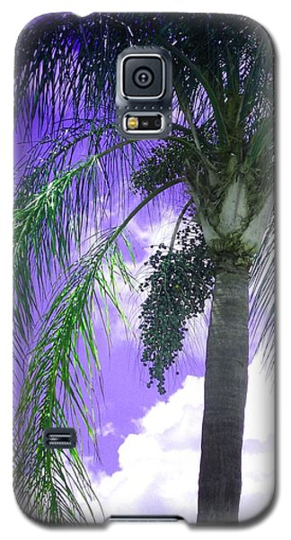 Galaxy S5 Case featuring the photograph Palm Tree Seeding by Rosalie Scanlon