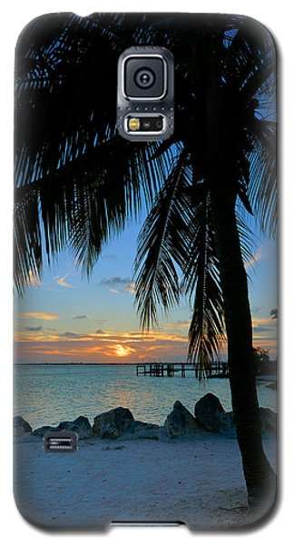 Galaxy S5 Case featuring the photograph Palm Tree Sunset by Stephen  Vecchiotti