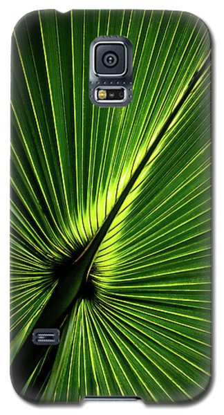 Palm Tree With Back-light Galaxy S5 Case