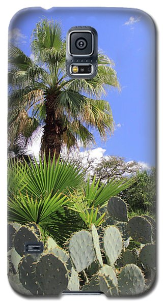 Palm Trees And Cactus Galaxy S5 Case