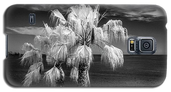 Galaxy S5 Case featuring the photograph Palm Trees At Laguna Beach In Infrared Black And White by Randall Nyhof