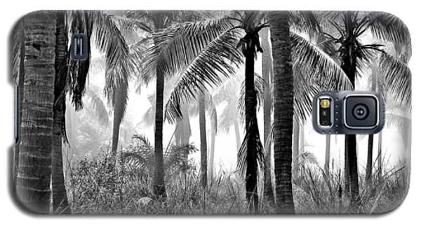 Galaxy S5 Case featuring the photograph Palm Trees - Black And White by Marianna Mills