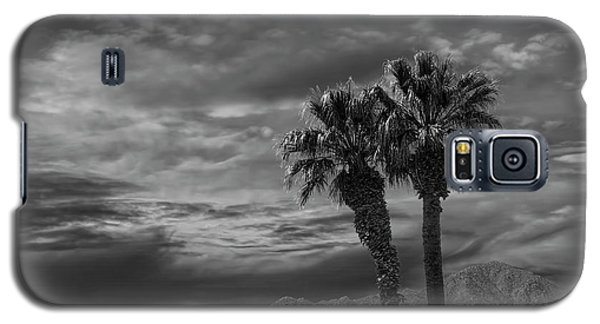 Galaxy S5 Case featuring the photograph Palm Trees By Borrego Springs In Black And White by Randall Nyhof