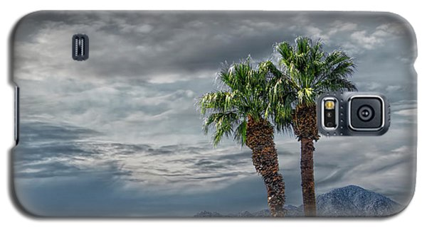 Galaxy S5 Case featuring the photograph Palm Trees By Borrego Springs In The Anza-borrego Desert State Park by Randall Nyhof