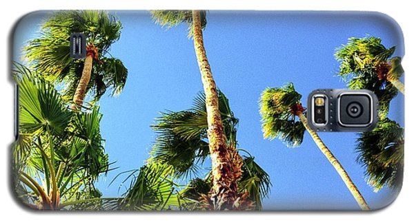 Palm Trees Looking Up Galaxy S5 Case