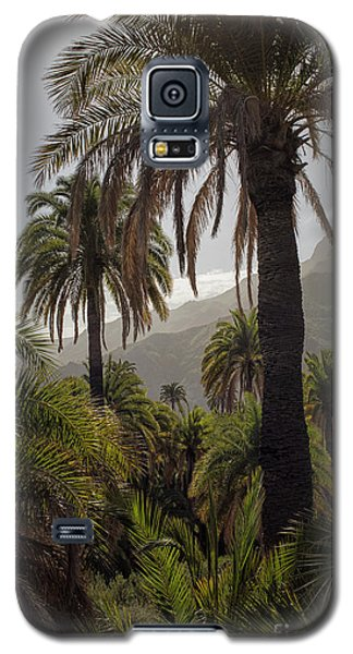 Palm Trees Galaxy S5 Case by Patricia Hofmeester