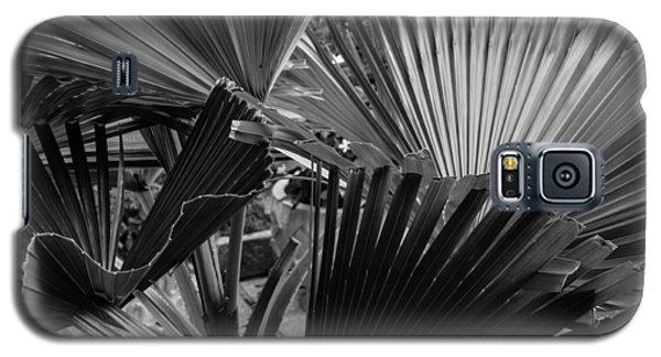 Palmetto In Black And White Galaxy S5 Case