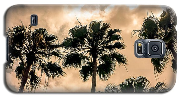 Palms Against The Sky Galaxy S5 Case