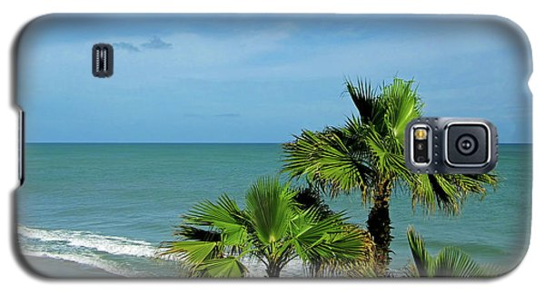 Palms At Vero Beach Galaxy S5 Case