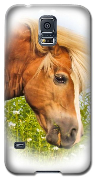 Galaxy S5 Case featuring the photograph Palomino Head by Debbie Stahre