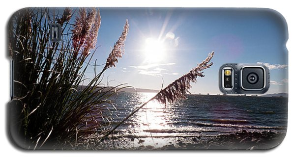 Pampas By The Sea Galaxy S5 Case