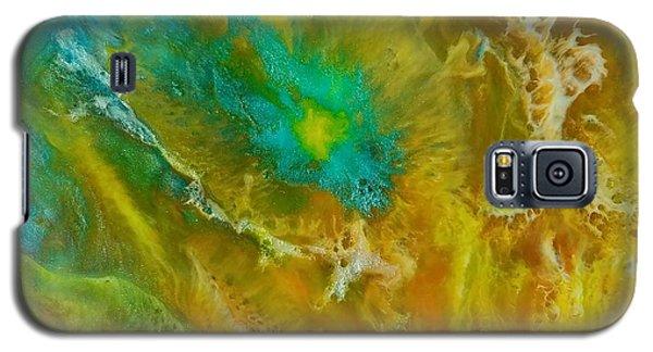 Pandora  Galaxy S5 Case
