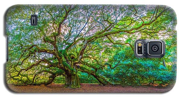 Panoramic Angel Oak Tree Charleston Sc Galaxy S5 Case