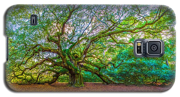 Panoramic Angel Oak Tree Charleston Sc Galaxy S5 Case