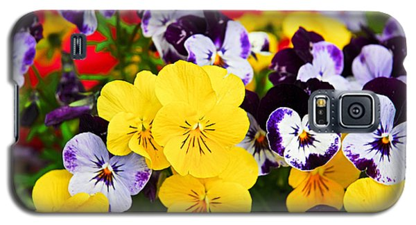 Pansies And Red Cart Galaxy S5 Case