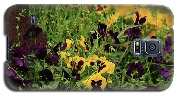 Galaxy S5 Case featuring the photograph Pansies by Kim Henderson