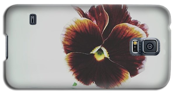 Galaxy S5 Case featuring the photograph Pansy Face by Karen Stahlros